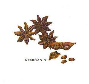 Kleine Gewürzfibel - Sternanis